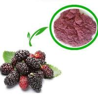 Quality Offering Mulberry Leaf Extract.organic mulberry leaf p.e..Cost Effective! for sale