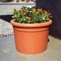 Quality Plastic Planters Plastic Straight Sided Cylinder for sale