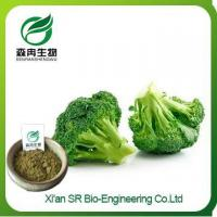 Quality Broccoli Powder, China Supplier Organic Broccoli Powder, High Quality Broccoli Seed Extract for sale