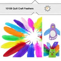 Buy cheap Hobby Bulk Quill Feathers for Craft Supplies from wholesalers