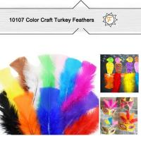 Quality Assorted Color Craft Turkey Feathers for Kids DIY Project for sale
