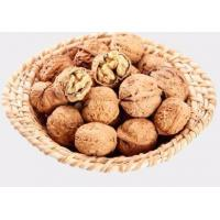 Quality dried fruit walnut from China supplier for sale