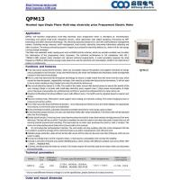 China QPM13 Mounted type Single Phase Multi-step electricity price Prepayment Electric Meter on sale