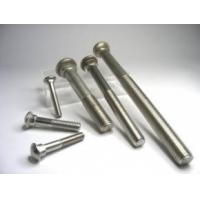 Quality Track Bolt ; Stainless Steel ; Passivated 34-000000A2 for sale