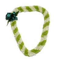 Quality Fancy Spiral Orchid Lei (Green & White) for sale