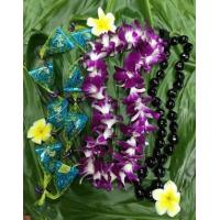 Quality Orchid Flower Lei Graduation Package - Da Nutty Buddy for sale