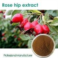 Quality High quality Vitamin C 500mg with Rose Hips chewable for sale