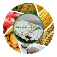 China Chemicals Agriculture Fertilizer Price Of Manganese Sulfate on sale