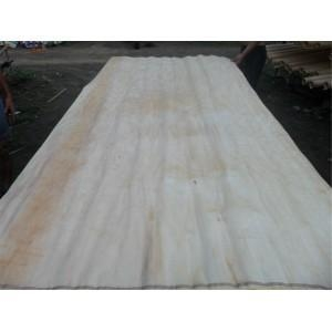 Buy Radiate Pine Plywood at wholesale prices