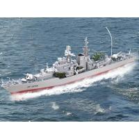 China RC boat Item:REB2879A on sale