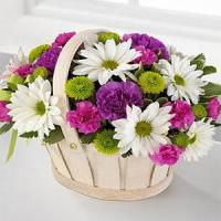 Mother's Day Healing Grace Standard.No.15 delivery flower to australia sydney