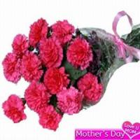 Quality A Dozen Pink Carnations NO.30 delivery flower to taiwan for sale
