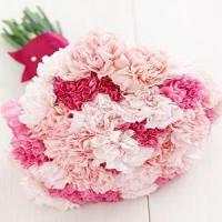 Quality Red and Pink Carnations NO.27 delivery flower to taiwan for sale