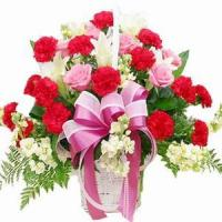 Quality Deeply Touch NO.25 delivery flower to taiwan for sale