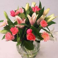 Quality Pink Beauty NO.70 deliver flower to taipei for sale