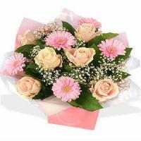 Quality Peach beauty NO.5 taipei flower delivery for sale
