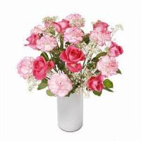 Quality Rose and Carnation NO.14 taipei flower delivery for sale