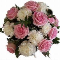 Quality Rose and Carnations Bouquet NO.34http://www.minigiftplaza.com/ for sale