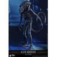 Quality Hot Toys Aliens Alien Warrior for sale