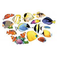 Quality Multi-Shaped puzzle Reef Fish for sale