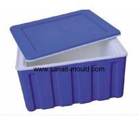 Quality high quality plastic injection transport box moulds p15080301 for sale