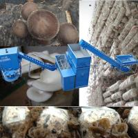 Quality oyster mushroom production equipment for sale