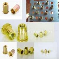Quality small Head Threaded Insert Nuts hex head rivet nut for sale