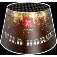 Quality 200g Fountains Wild Horse for sale