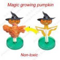Quality Magic growing Pumpkin NO.:SD-112 for sale