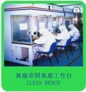 Quality SANYUEN Clean Room Equipment clean bench for sale