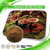 Quality Top Quality Certified Organic Experience Manufacture Organic Reishi for sale