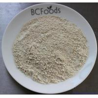 Quality Shii-take Powder for sale
