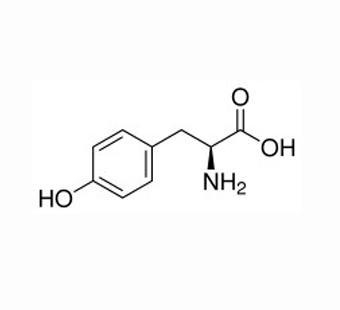 Buy Amino Acid Products L-TYROSINE Model: a-001 at wholesale prices