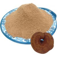 Quality Ganoderma lucidum grinded fine powder for sale