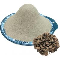 Quality Maitake mushroom powder for sale