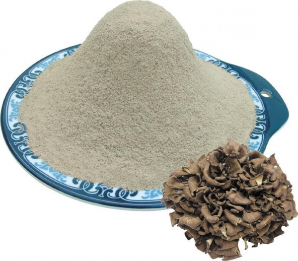 Buy Maitake mushroom powder at wholesale prices