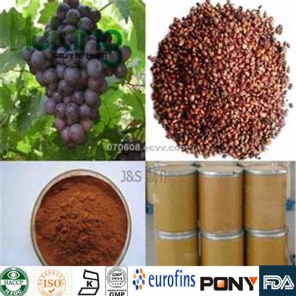 Buy Glycosides  Grape Seed Extract at wholesale prices