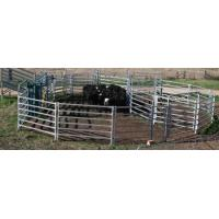 heavy duty hot dipped galvanized cattle yard panel/livestock fence/cattle fence/cattle panel