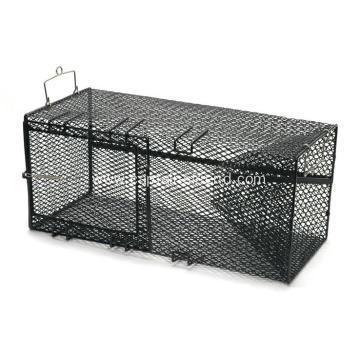 Buy Stainless Steel Lobster Net Trap at wholesale prices