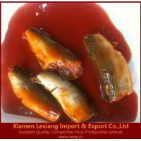 China canned fish Product name:canned mackerel in tomato sauce on sale