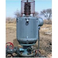 Quality Direct-drive screw oil pump for sale