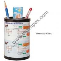 China Pen Holder with Veterinary Chart on sale