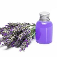 Quality Lavender oil for sale