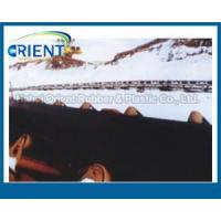 China Cold Resistant Conveyor Belt wholesale