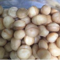 Quality Macadamia Nuts for sale