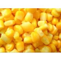 Quality Canned Sweet Corn for sale