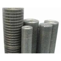 Quality Galvanized Welded Wire Mesh Roll for sale