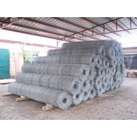 Quality Hexagonal Wire Mesh 03 for sale