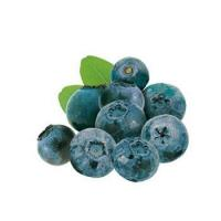 Quality Pastry Frozen Blueberry Puree for sale
