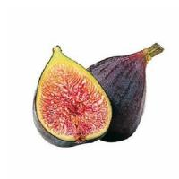 Quality Pastry Frozen Fig Puree for sale